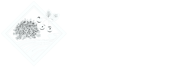 The Cherrybrook Group